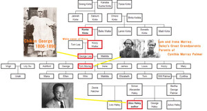 Kunta_kinte_family_tree
